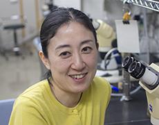 稲垣 幸の顔写真