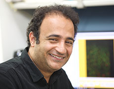 Sami Mustafaの顔写真